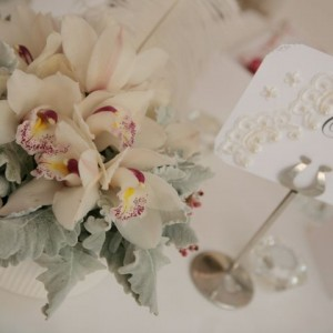 decor and styling wedding packages and ceremonies house of laurels maleny sunshine coast