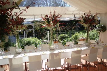 vases decor and styling wedding ceremonies house of laurels wedding venue maleny sunshine coast