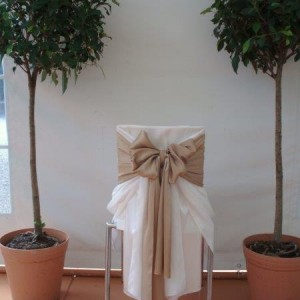 coloured bows for chair decorations decor and styling house of laurels maleny sunshine coast